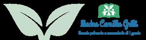 gritti_logo